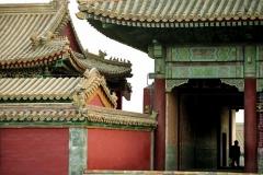 1_Beijing_cyte_2
